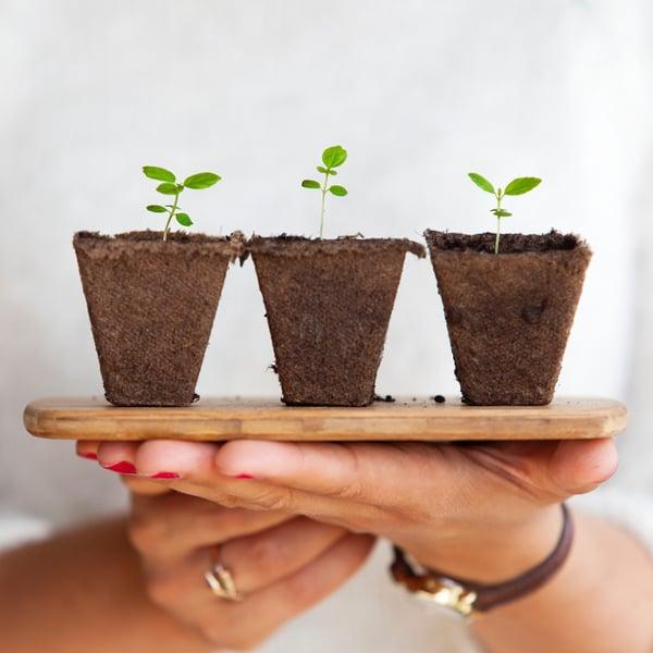 nurturing leads